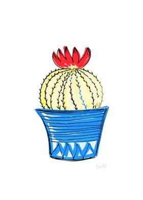 Cactus with blue pot