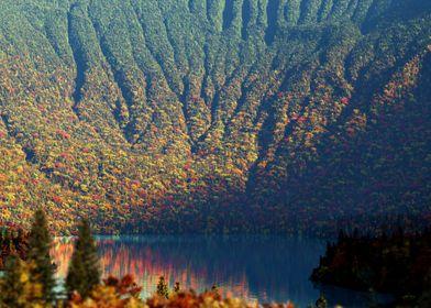 Autumn Cove