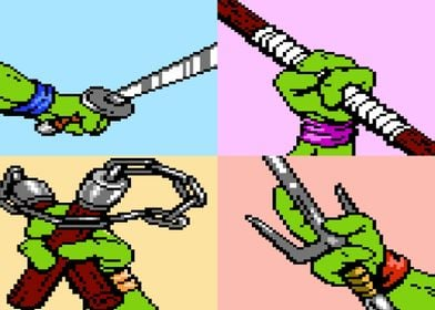 Choose Your Turtle