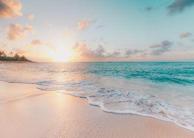 Sandy Beach at the Ocean