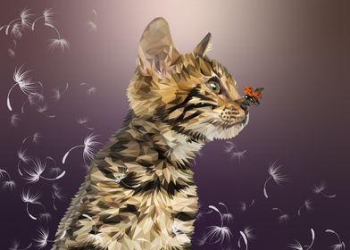 Springcat