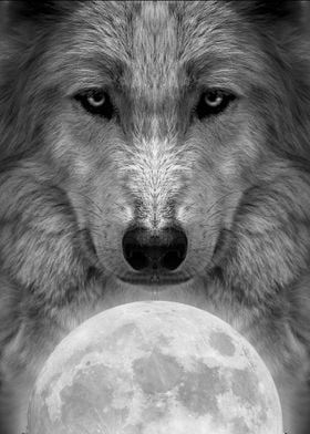 wolf king of the moon