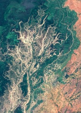 Niger inland delta