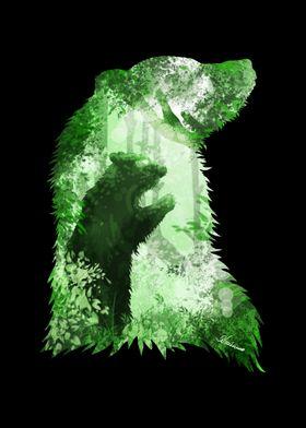 Evergreen Bear