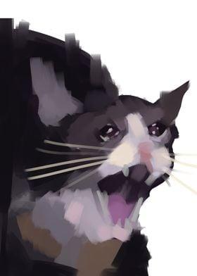No context crying cat
