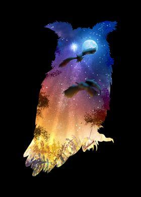 Owls Hour