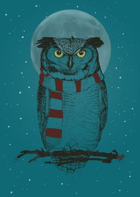 Winter owl II