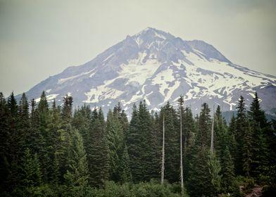Mount Hood from Burnt Lake
