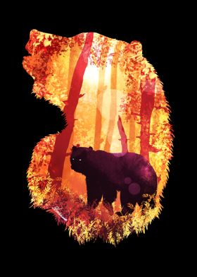 Evening Solace Bear