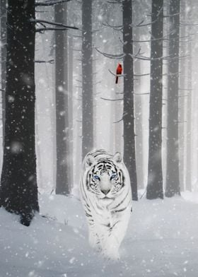 White Tiger and Cardinal