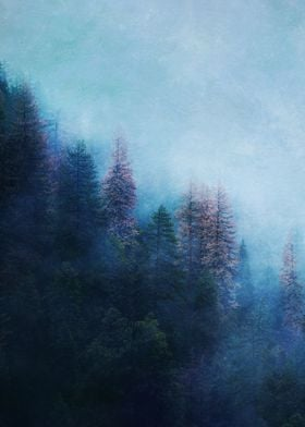 Dreamy Winter Forest