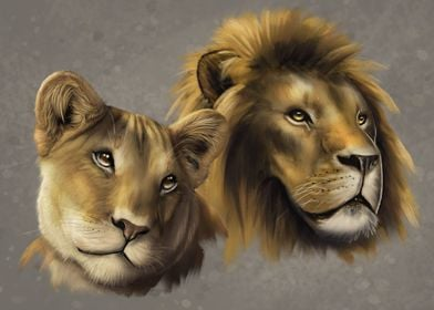 Lion and lioness heads
