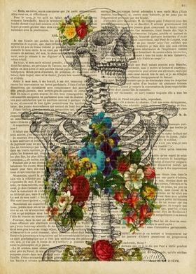 sugar skull Skeleton Bones