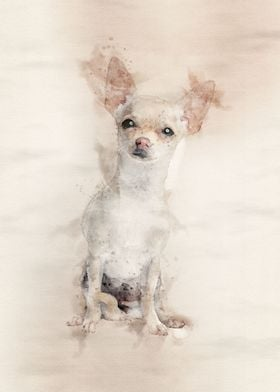 Chihuahua in Watercolor