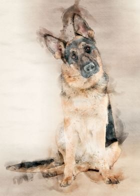 German Shepard Watercolor
