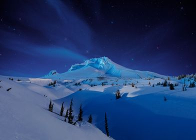 Winter Dreamscape