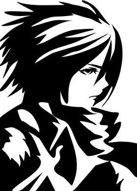 Heroes and Villains Mikasa