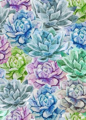 Cactus Pattern 16