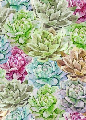 Cactus Pattern 17