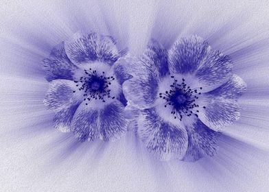 Flower in blue 2