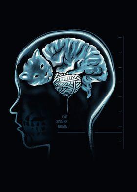 Cat Owner Brain