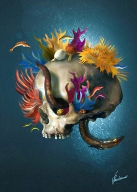 Skull Reef
