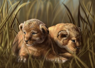 Lion cubs hiding in grass