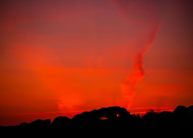 Red sky with trees