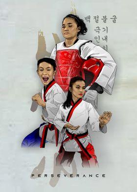 taekwondo perseverance