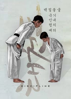Taekwondo discipline