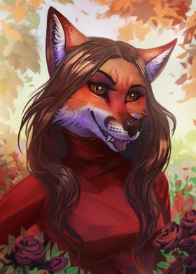Cute fox