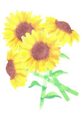 watercolor sunflower bunch