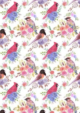 Cardinals juncos on roses