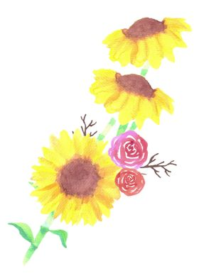 Sunflowers rose watercolor
