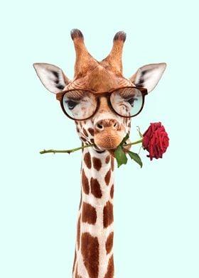 Romantic Giraffe