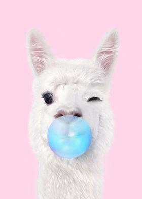 Bubblegum Lama