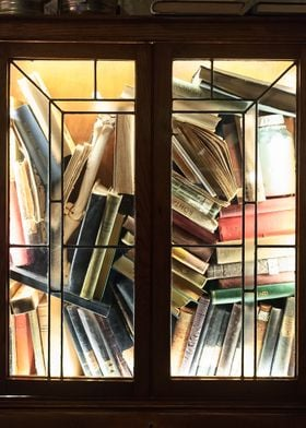 Lit Book Cabinet