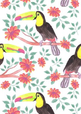 Toucan bird and flowers