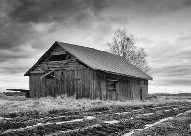 Barn By The Spring Fields