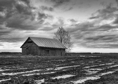 Barn House On The Fields