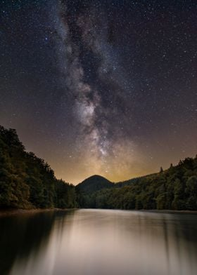 Forest on Lake Starry Sky