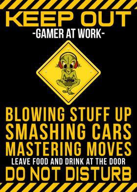 Gamer Funny Poster
