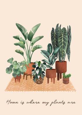 Plants Home
