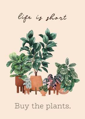 Buy the plants art