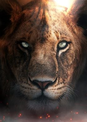 The Lion Cub Portrait