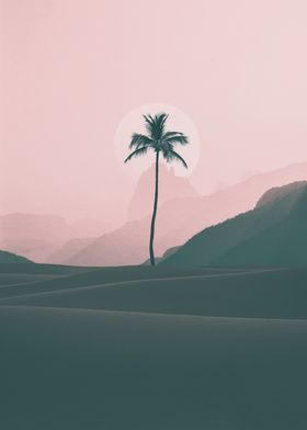 minimalist coconut tree
