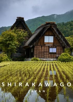 Shirakawago Village