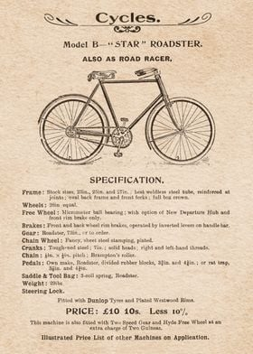 Bicycles Roadster