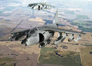 Harrier Flight