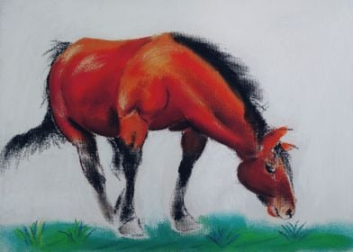 horse in dry pastel